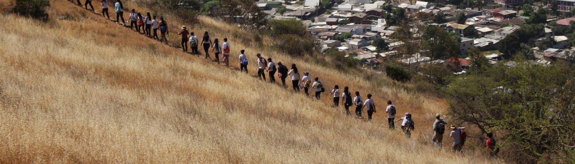 Foto del curso, estudiantes y profesores subiendo el cerro