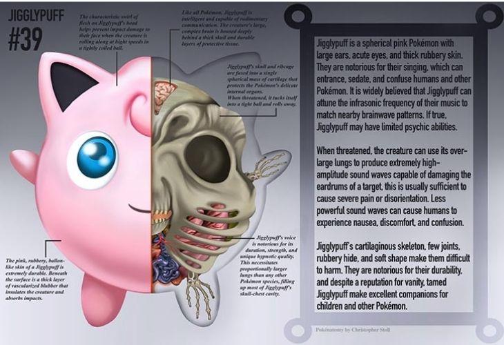 Anatomía de Jigglypuff Pokemón