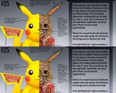 Anatomía de Pikachu Pokemón