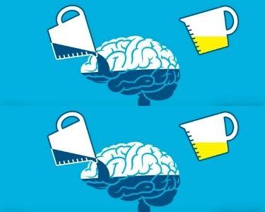 Ilustración del funcionamiento del cerebro