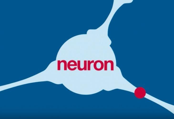 Ilustración gráfica del funcionamiento de la neurona