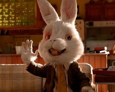 Foto de Ralph, un conejo de laboratorio que protagoniza un cortometraje contra el testeo animal