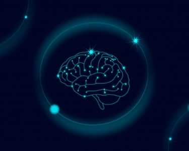 aprendizaje y cerebro en un periodo crítico del aprendizaje