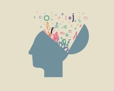 un cerebro sacando cosas de su memoria y abriéndose a nuevos conocimientos