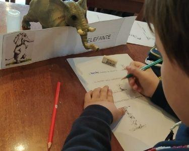 Fotografías de varios niños trabajando en actividades de alfabetización de la docente Karina Inés Gómez